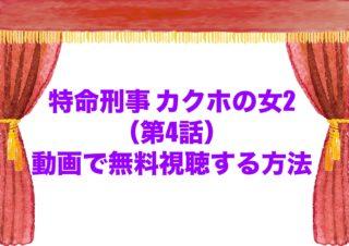 特命刑事 カクホの女2 ドラマ 見逃し 4話 動画 無料 U-NEXT
